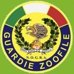 logo Nogra